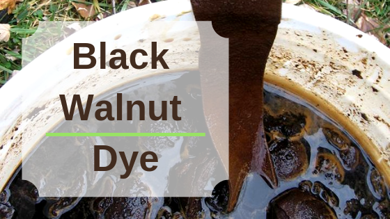 Husking Black Walnuts for Organic Black Walnut Dye (Brown Color)