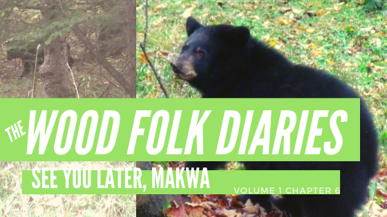 The Wood Folk Diaries: Volume 1, Chapter 6: See You Later, Makwa